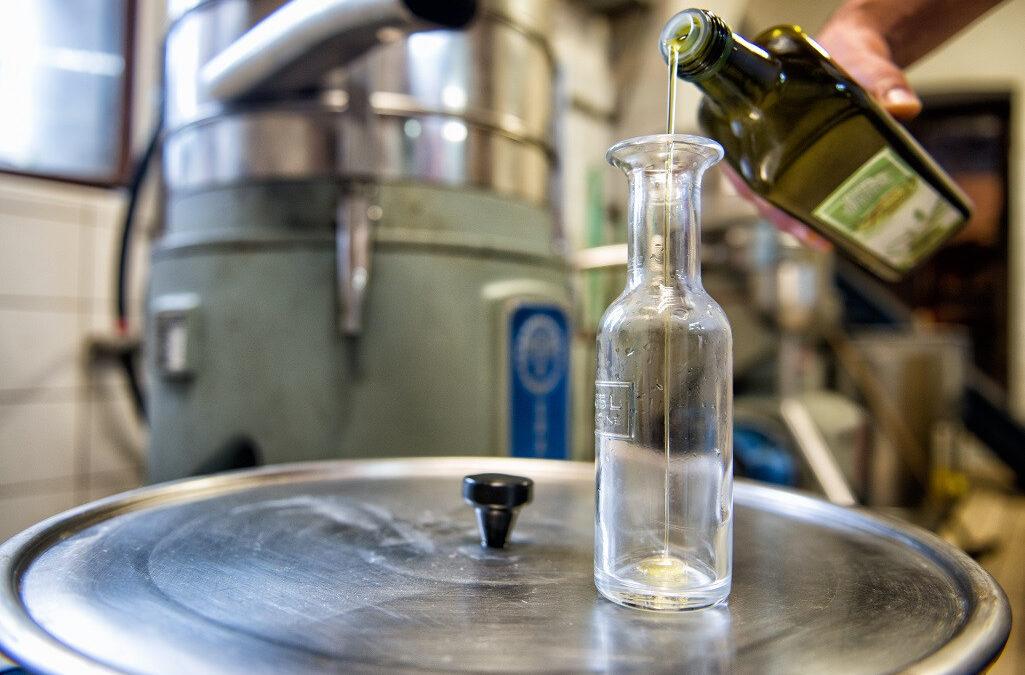 conservare-olio-d-oliva